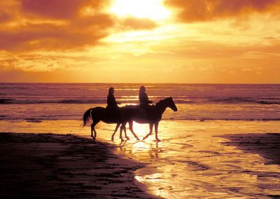 Beach_Horses_2