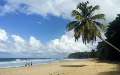 Facts You Need To Know About The Dominican Republic