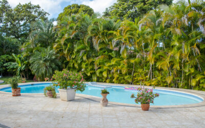 Thinking Of Moving To The Dominican Permanently? Here's What You Need To Know!